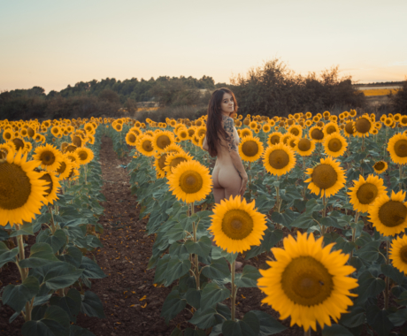 Whitejuditart & Girasoles